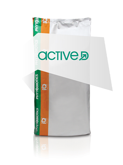 Active D actieve vorm vitamine D 3